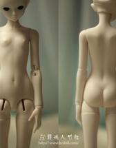 『42.5cmS胸一段女体』(...
